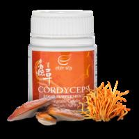 2018-Cordyceps_800x800